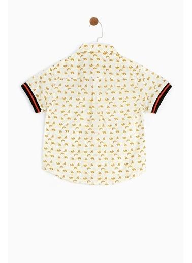 BG Baby Erkek Bebek Desenli Gömlek 19SS1BG1615 Renkli